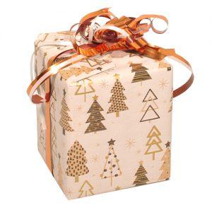 141121 wijnverpakking wijnverpakkingen flesverpakking cadeauverpakkingen Dessinpapier